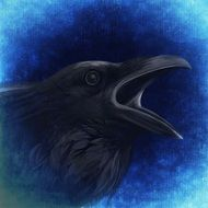 drawing of a black raven