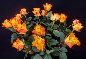 Bouquet Of Roses Roses Bouquet