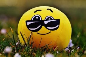 yellow smiley with glasses on the grass