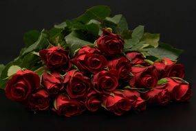 bouquet of red roses on a dark background