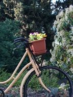 Bicycle with the flowers