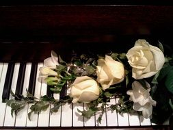 bouquet of white roses on the piano keys