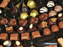 variety of chocolates in a box