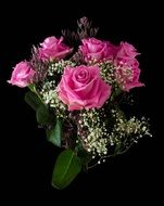 festive bouquet of pink roses on a black background