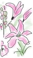 Pink Spring Flower drawing