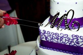 cutting of the wedding cake
