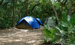 three tents for camping in the tropics