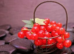 red currant in the small iron basket