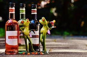 two toy Frogs communicating at Wine bottles