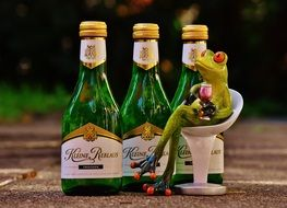 frog drinking wine