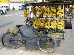 old Bicycle loaded with Bananas for sale on street, Vietnam