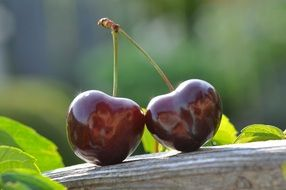 two sweet ripe cherries
