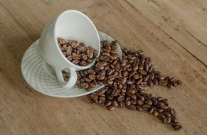tasty and fresh Coffee Beans with white cup and white plate on the wooden surface