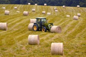 Bales Hay Agriculture