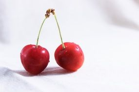 two cherries on white