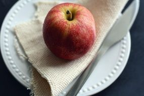 apple lies on a napkin on a white plate