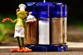frog cooking with spices