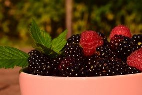 raspberries and blackberries in the plate