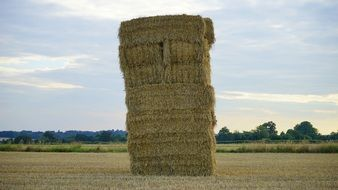 stacked square haystacks on the field