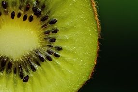 healthy kiwi fruit