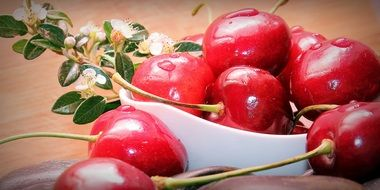 glossy sweet cherries
