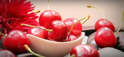 ripe red cherries on a plate