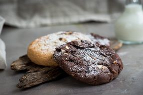 appetizing Chocolate Cookie