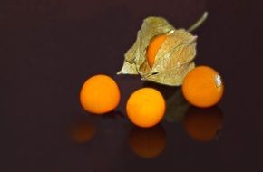 Physalis, orange Vegetables, still life