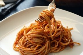 Pasta with souce Italian food