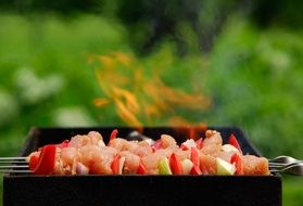 barbecue with red pepper on the grill