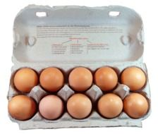 chicken eggs in carton
