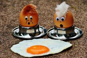 Fried Egg Mourning Funny