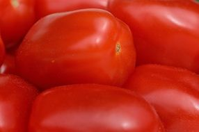 healthy Tomatoes Vegetables Macro Red