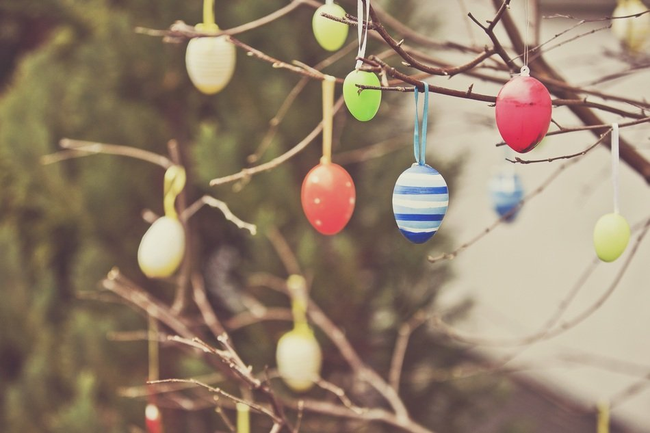 Easter Eggs on a tree branch