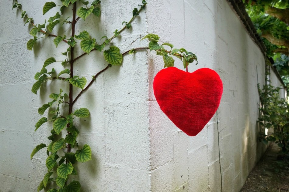red heart on a small green tree