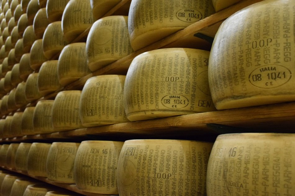 Parmigiano Reggiano Cheese heads on shelves, Italy