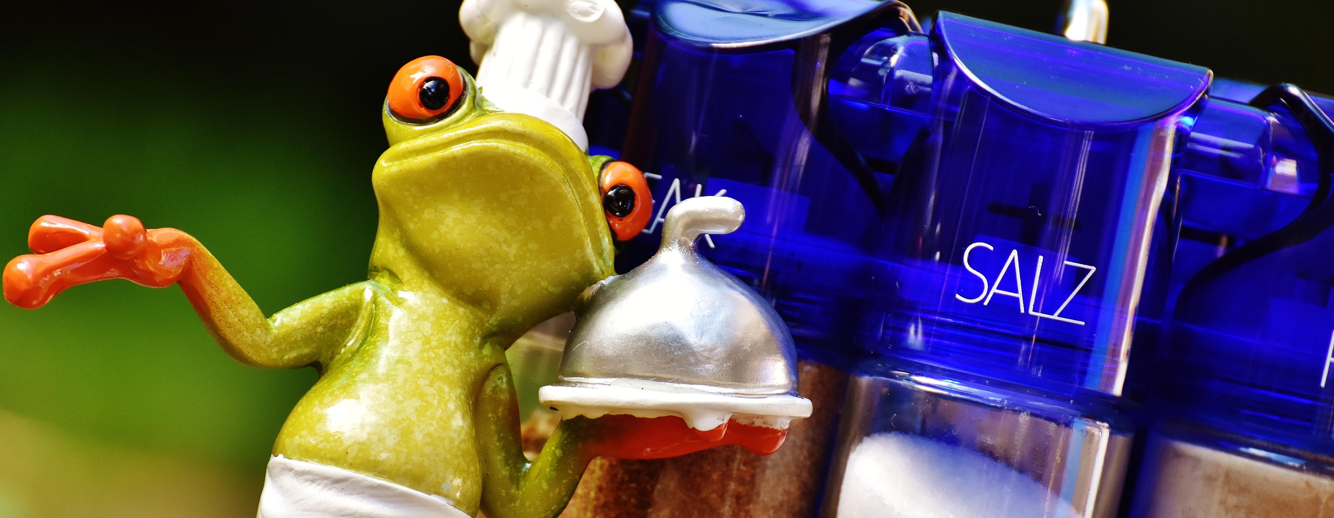 chef-frog-lick