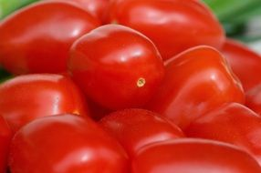 garden Tomatoes Vegetables Macro Red