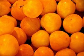 apricot is a healthy fruit