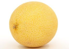 isolated yellow melon