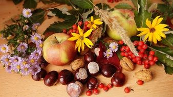 autumn still life of fruits and flowers