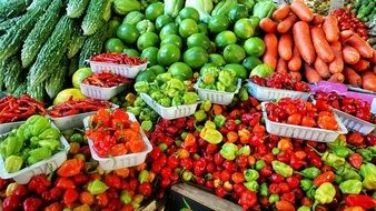 Vegetables in a Farmers Market