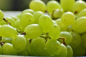 delicious green Grapes Fruits