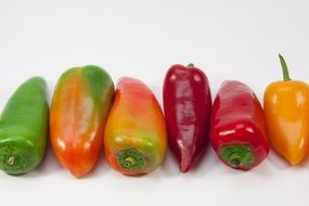 colorful healthy peppers
