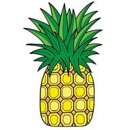 drawing of a pineapple