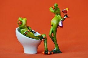 Funny frogs with drinks