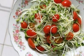 vegetarian salad with tomatoes