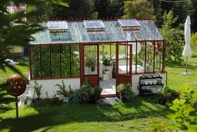 Greenhouse in summer