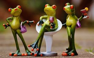 Funny Party frogs Drink chat