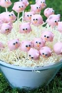 Pink cake pops in the blue basket